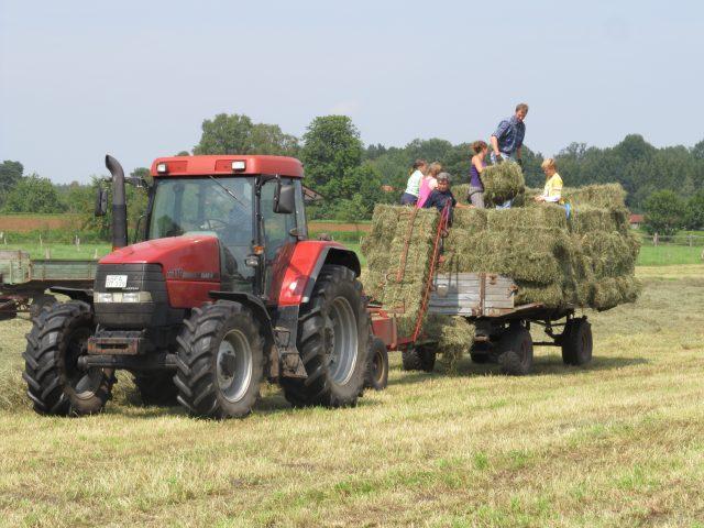Urlaub auf dem Bauernhof in der Lüneburger Heide