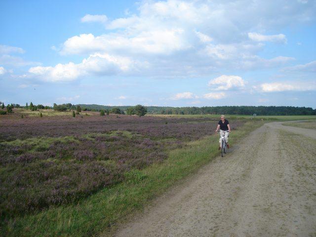 Entdecken Sie Natur und Umgebung der Lüneburger Heide
