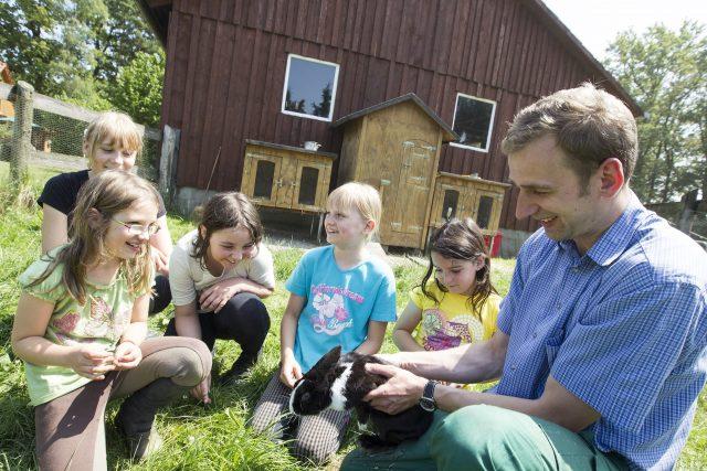 Kaninchen auf dem Ferienhof Stegen